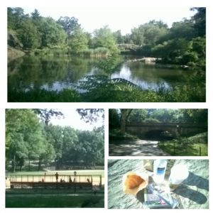 Central Parkin aurinkoisessa ympäristössä aamupalaa kelpaa nauttia urheilua seuraten.